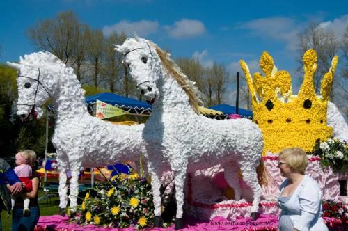 Spalding Horses