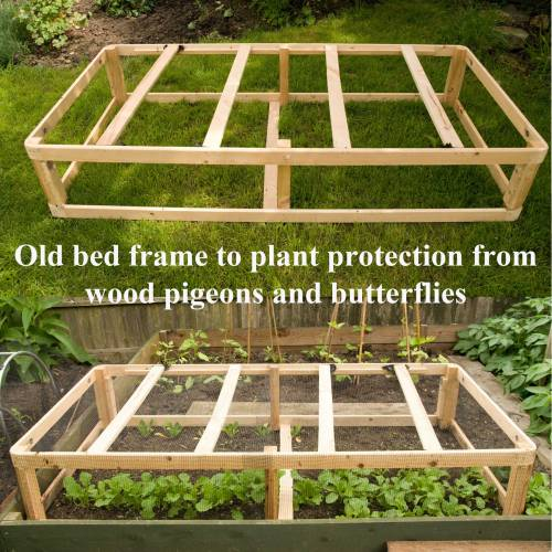 Plant Protection re-cycled stlye
