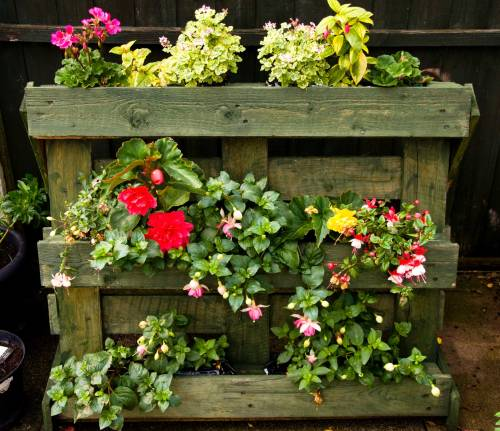 Pallet Planter For ME